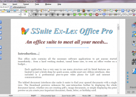 SSuite Ex-Lex Office Pro screenshot