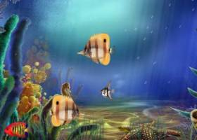 Animated Aquarium Screensaver screenshot