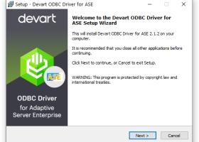 SAP Sybase ODBC driver (32/64 bit) - Windows 8 Downloads