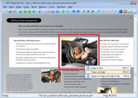 PDF Snipping Tool screenshot