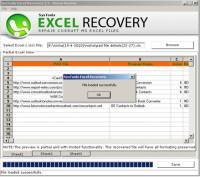 Recover Excel File Error screenshot