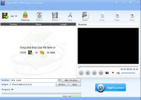 Lionsea FLV To MP4 Converter Ultimate screenshot