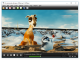 MPlayer for Windows (Full Package)